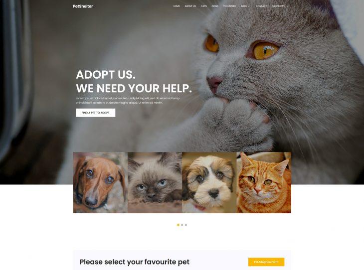 Website thú cưng 06